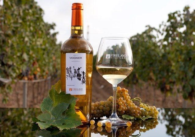 wine-tour-baku-13-800x450 (2)